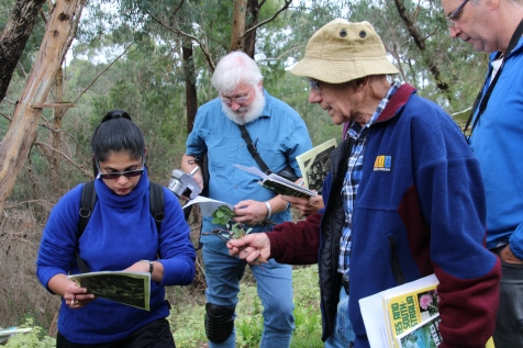 "Leon Costerman's ""Identifying the valleys' vegetation"""