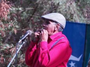 Uncle Herb gumleaf performance